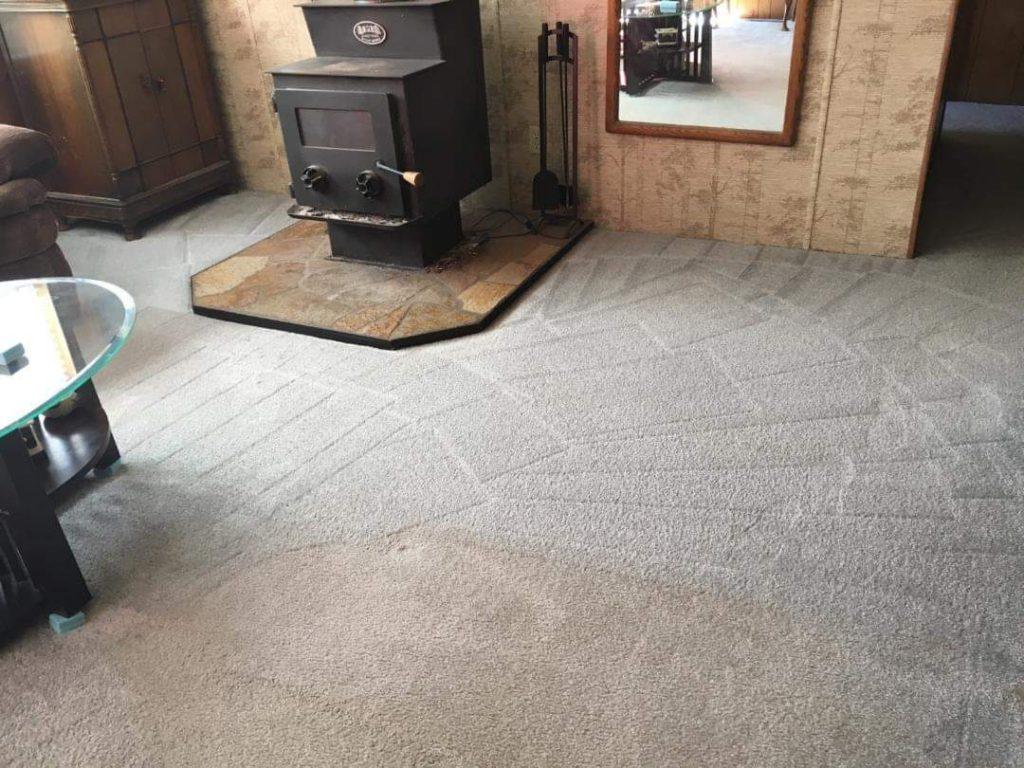 beautiful clean carpet